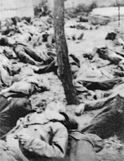 Massaker in der Haftanstalt Stein